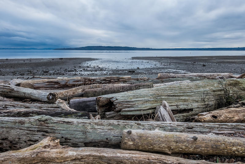 Serene Puget Sound At Low Tide stock image