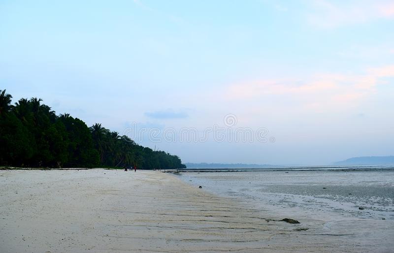 Serene Relaxing Sandy Beach Landscape with Lush Green Palm Trees with Sky at Dawn - Vijaynagar Beach, Havelock, Andaman Islands royalty free stock images