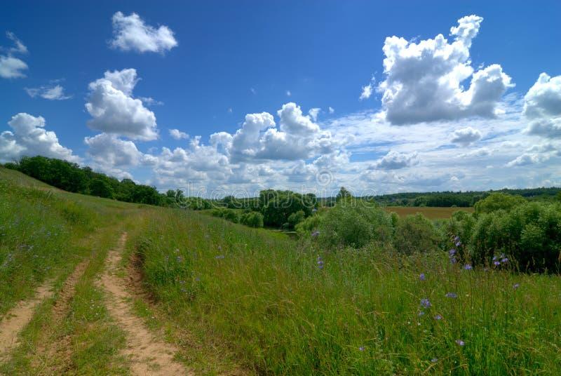 Download Serene rural landscape stock photo. Image of freedom, land - 2729900