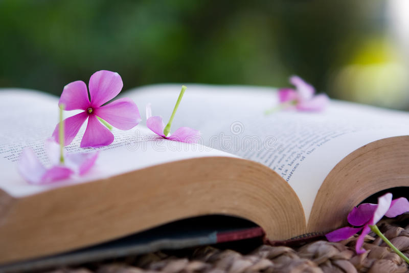 Serene scene of a book and flowers stock photo