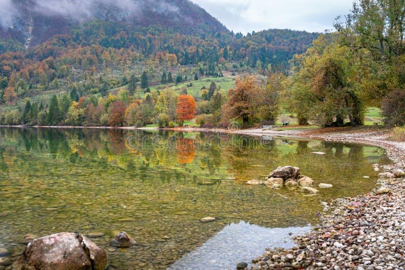 Serene view on lake. Bohinj lake, Slovenia royalty free stock photos