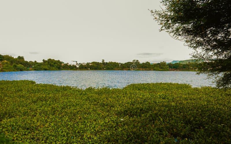 Serene Water Lake With Lush Greenery stock photos