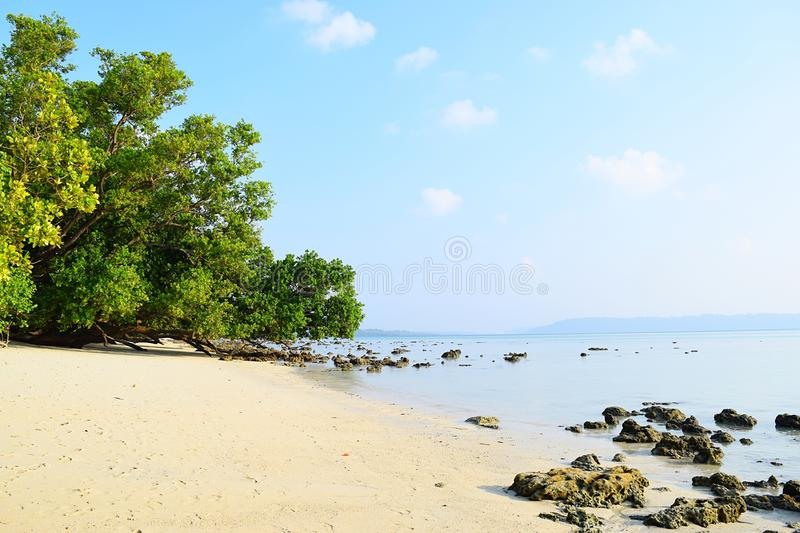 Serene White Sandy Beach with Lush Green Mangroves on Bright Sunny Day - Vijaynagar, Havelock Island, Andaman, India stock photography