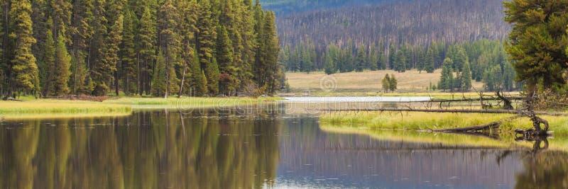 Serene Yellowstone River Landscape royalty-vrije stock fotografie