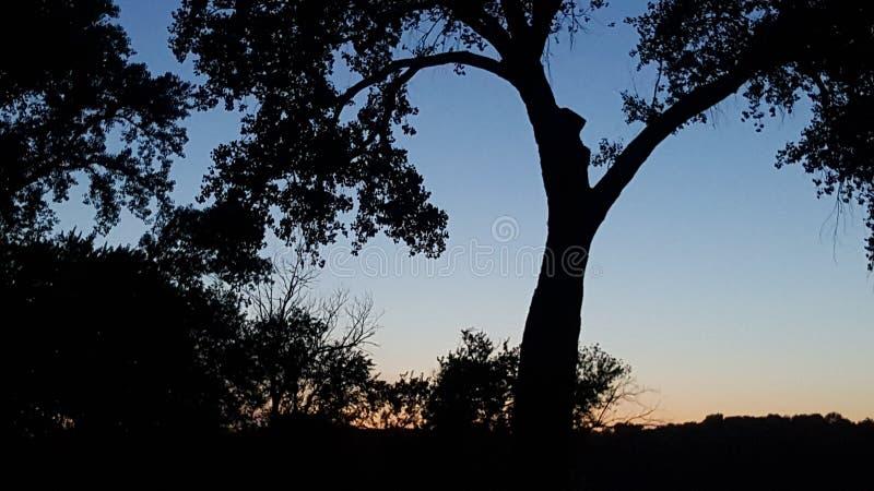 Serenety stock afbeeldingen