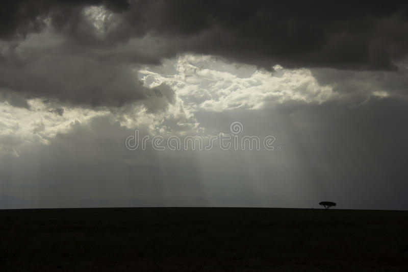 Serengeti Landschaft lizenzfreie stockfotos