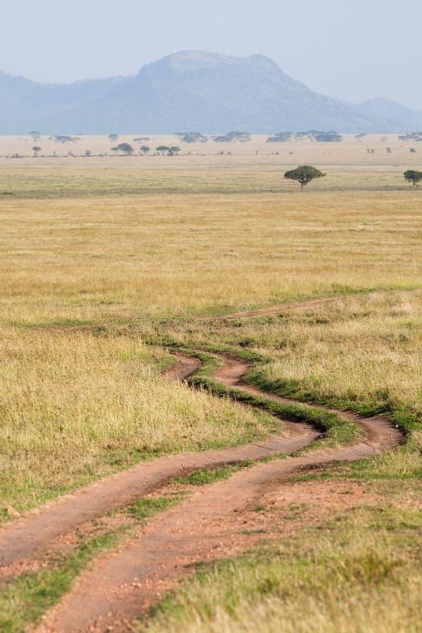Serengeti Straße lizenzfreies stockbild