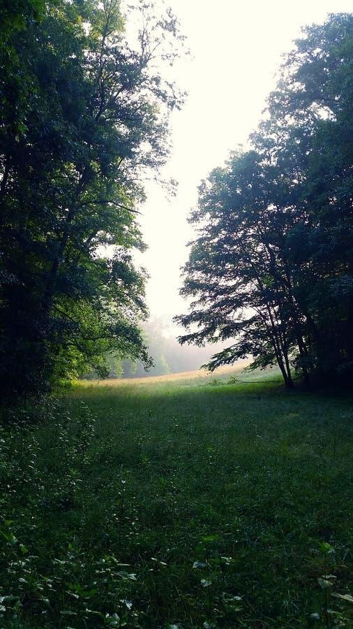 Serenidad suave imagen de archivo