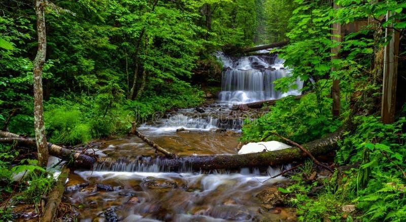 Serenidade foto de stock royalty free