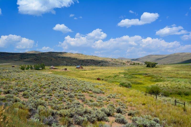 Serenità del Wyoming fotografia stock libera da diritti