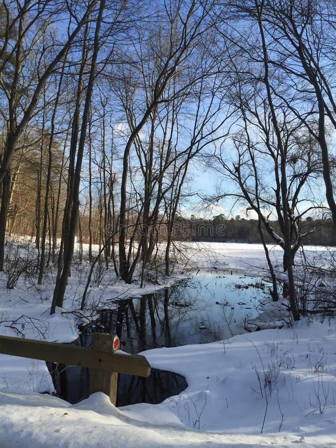 Serenità della neve immagini stock libere da diritti