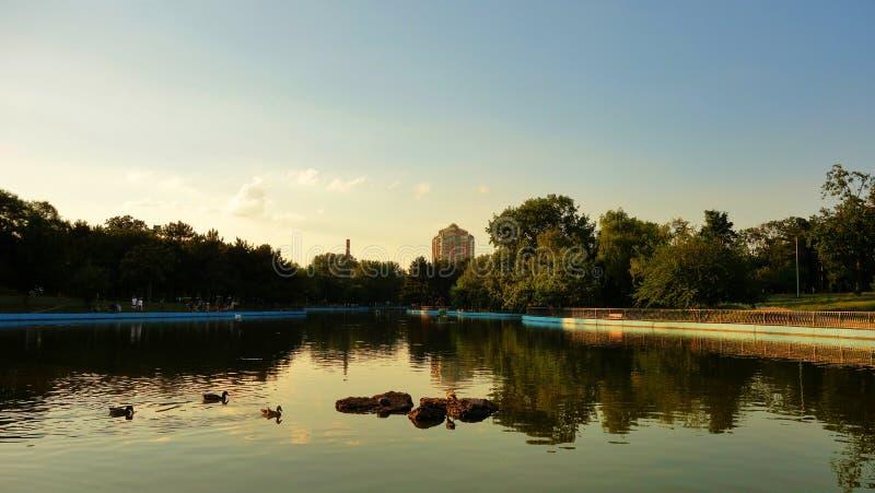 Sereniteitsvijver, zonsondergangtijd stock foto's