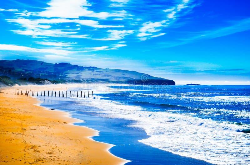 Serenitet på stranden Nya Zeeland för St Clairs fotografering för bildbyråer