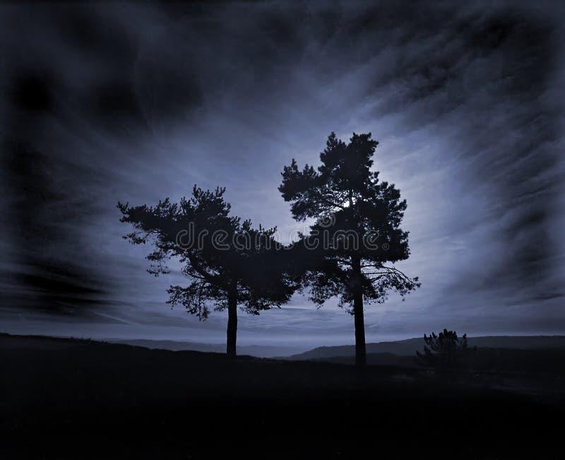 serenity fotografering för bildbyråer