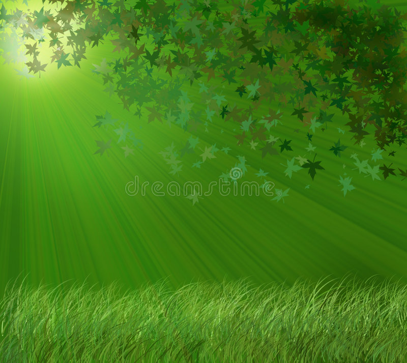 Download Serenity stock illustration. Image of beautiful, forest - 4567312