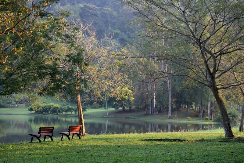 serenity royaltyfri foto