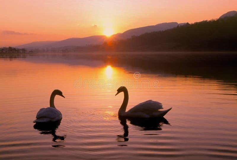 serenity royaltyfri fotografi
