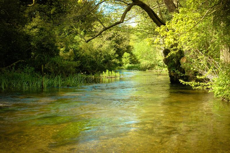 Serenity along the woodland stream. A quiet section of the river Nar on a beautiful spring day where it runs through woodland near Narborough in Norfolk stock photography