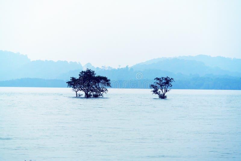 Serenity Lake, Nature Landscape stock photo