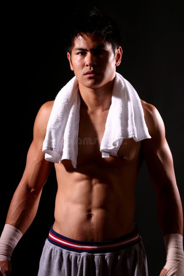 Serie del boxeador imagenes de archivo