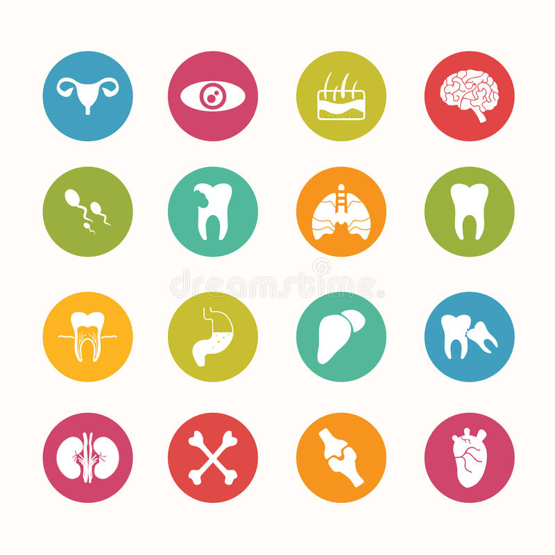 Serie del cerchio fissata icone umane di anatomia illustrazione di stock