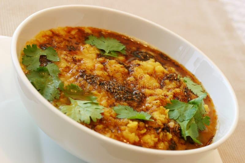 Serie india del alimento - sopa de lenteja (Dal) fotografía de archivo libre de regalías