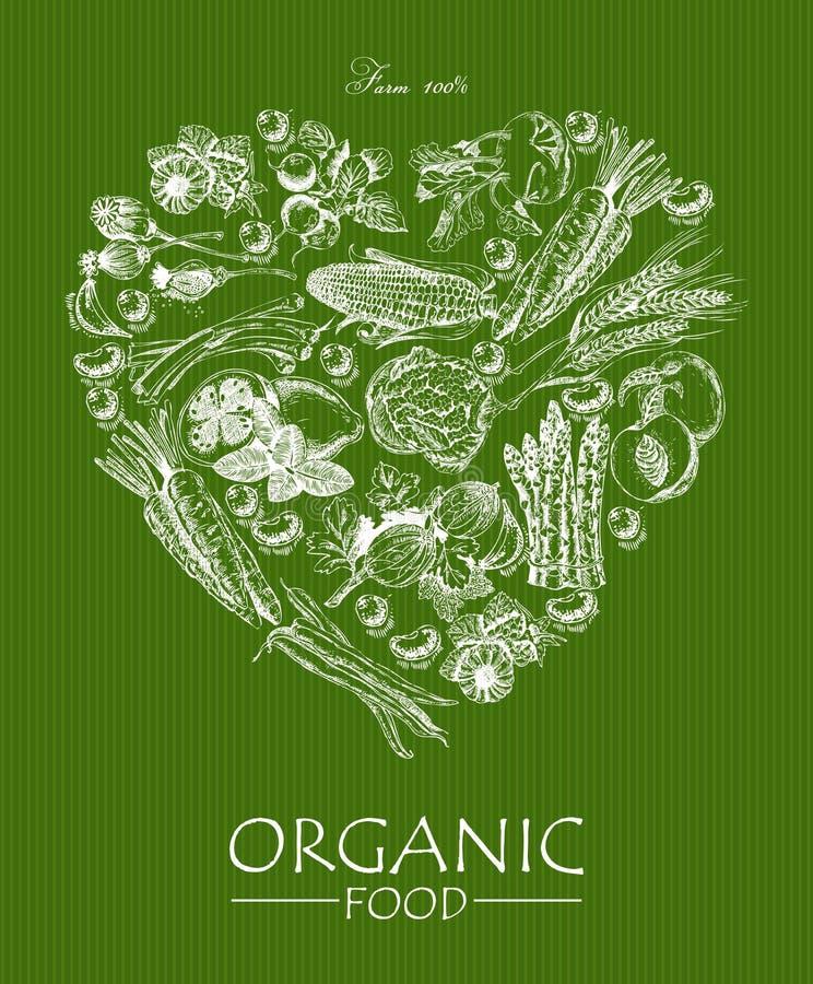 Serie - vektorfrukt, grönsaker och kryddor Meny för organisk mat Uppsättning av grönsaker, frukter och kryddor Lantgårdmål affisc royaltyfri illustrationer