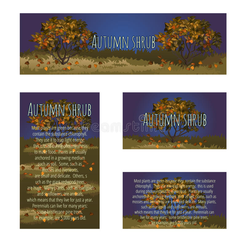 Series card with autumn tree and sample text stock illustration