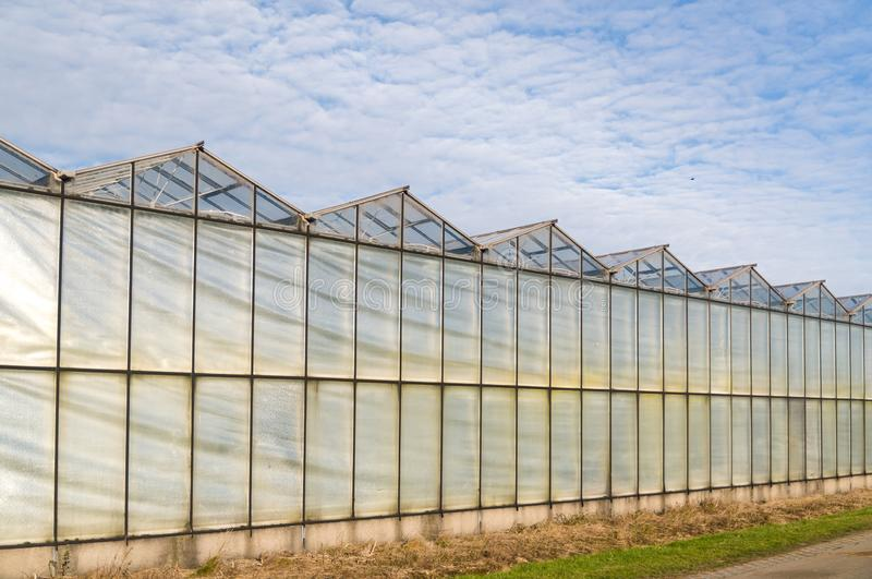 A series of greenhouses in a row royalty free stock image