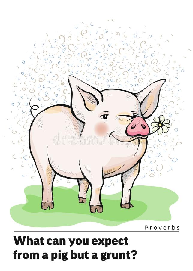 A series of postcards with a piglet. Proverbs and sayings. What can you expect from a pig but a grunt vector illustration