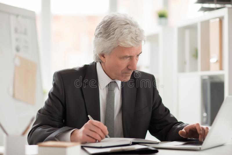 Senior director. Serious boss in suit sitting by workplace with laptop in front and reading online data royalty free stock images