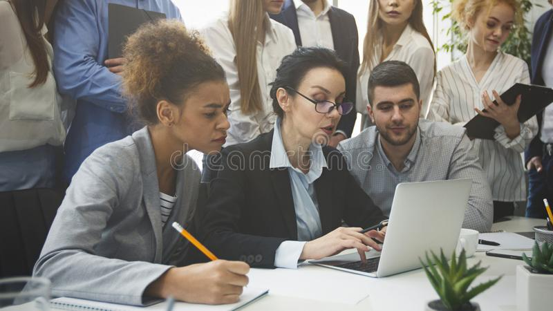 Serious business team analyzing reports on laptop royalty free stock images