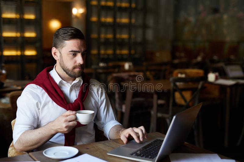 Having tea and networking. Serious businessman with drink sitting by table in front of laptop and searching for necessary data royalty free stock images