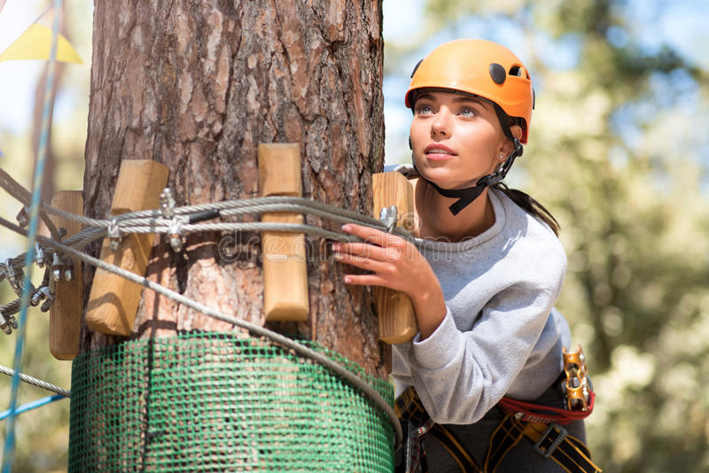 Serious concentrated woman hiding behind a tree stock photos