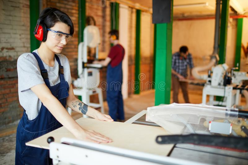 Concentrated lady cutting wooden plank. Serious concentrated young lady in safety goggles and ear protectors standing at workbench and adjusting wooden plank to royalty free stock photography