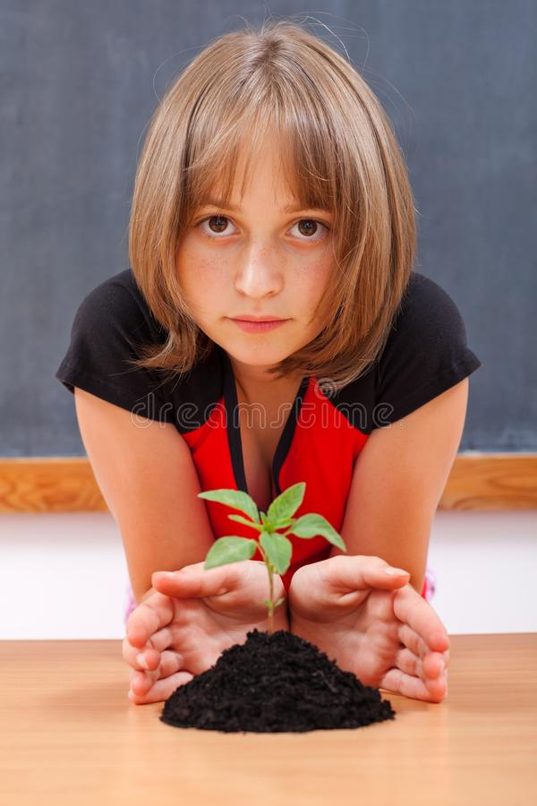 Download Serious Elementary Schoolgirl Protecting Plant Stock Image - Image: 20426149