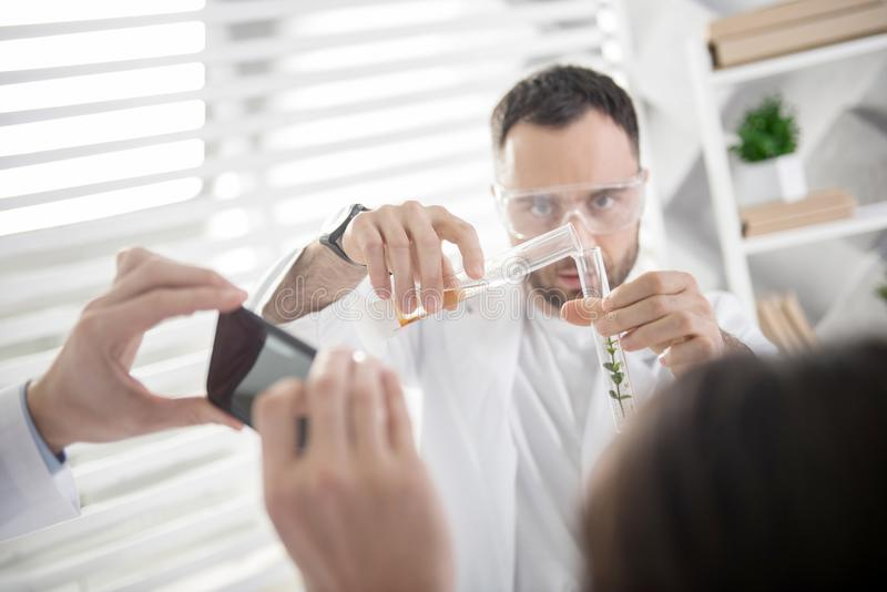 Concentrated ecologist holding a test tube. Serious experiment. Attractive concentrated young experienced ecologist holding a test tube and doing an experiment stock image