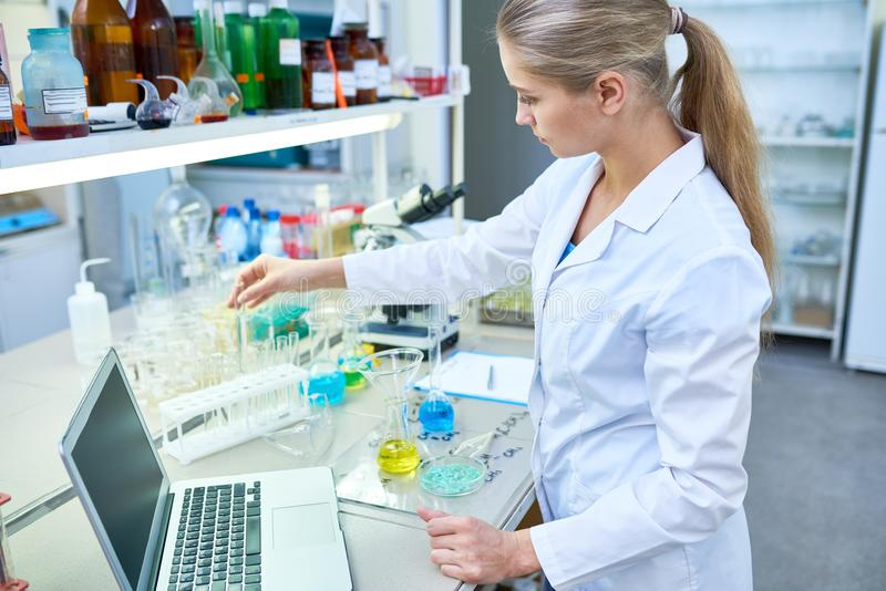 Serious female laboratory employee putting test tubes in rack royalty free stock images