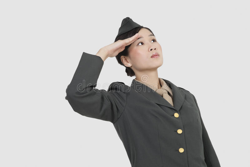 Serious female US military officer saluting over gray background royalty free stock photo