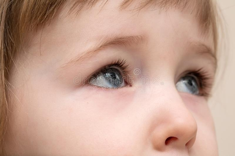 Serious grey eyes of white three years old child face stock photo