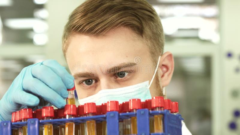 A serious lab technician studies test tubes with assays royalty free stock photography