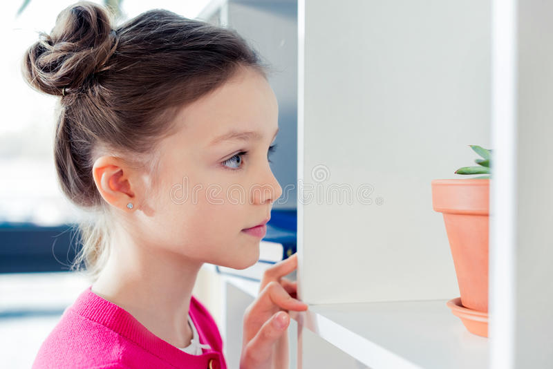 Serious little girl looking at bookshelves with houseplant stock photos