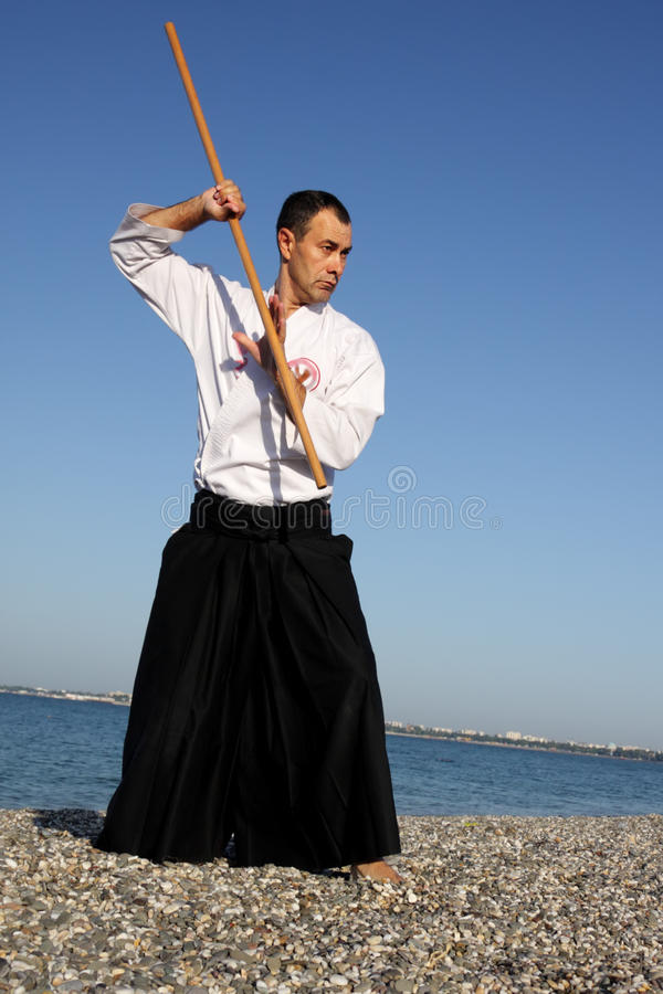 Download Serious Man Exercising Aikido Royalty Free Stock Photography - Image: 16033087