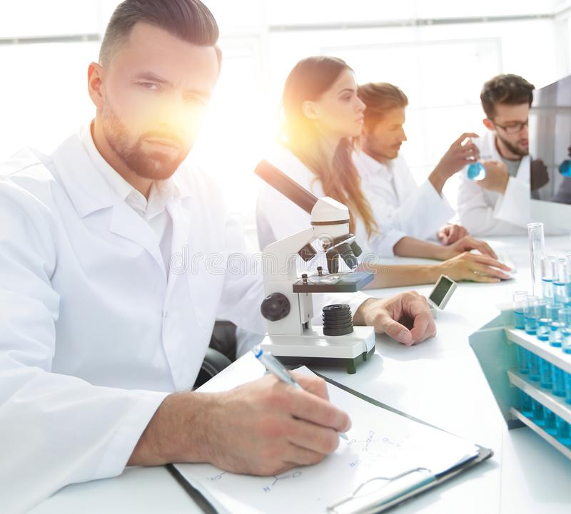 Serious scientists working in the laboratory royalty free stock image