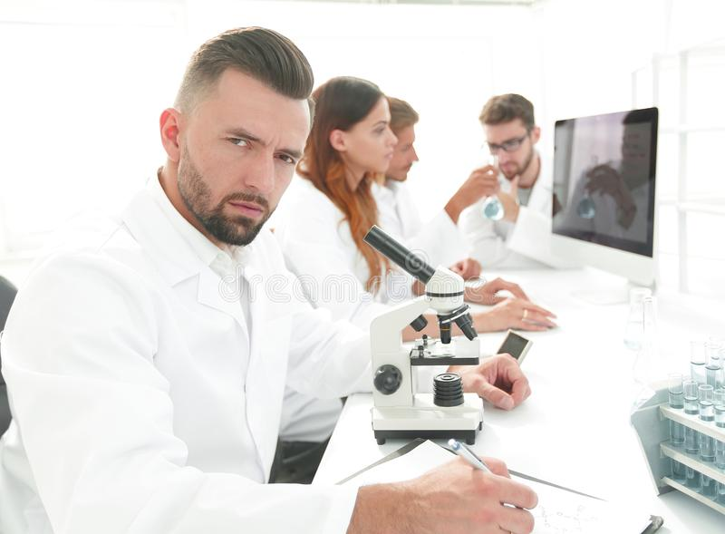 Serious scientists working in the laboratory royalty free stock photography