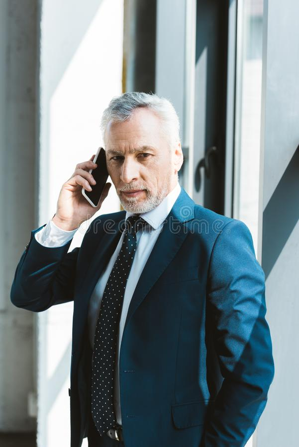 Serious senior businessman talking by smartphone and looking. At camera royalty free stock photos