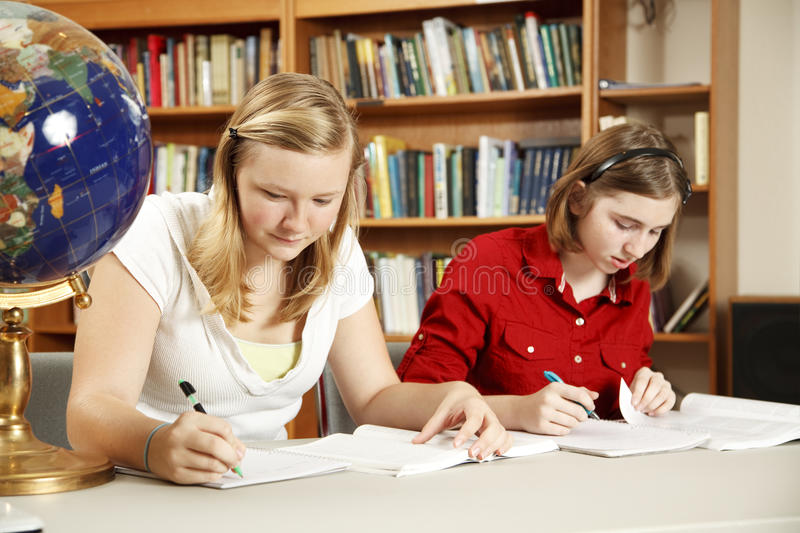 Serious Studying royalty free stock images