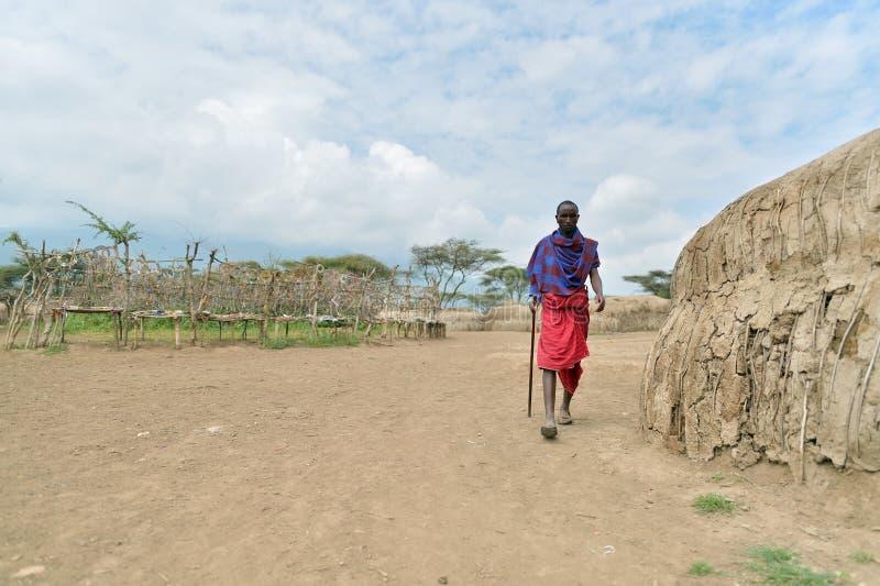 Seronera, Tanzania, Luty 12, 2016: Życie w Maasai wiosce zdjęcia royalty free