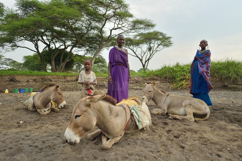 Seronera, Tanzanie, le 12 février 2016 : Jour ouvrable de Maasai photo libre de droits