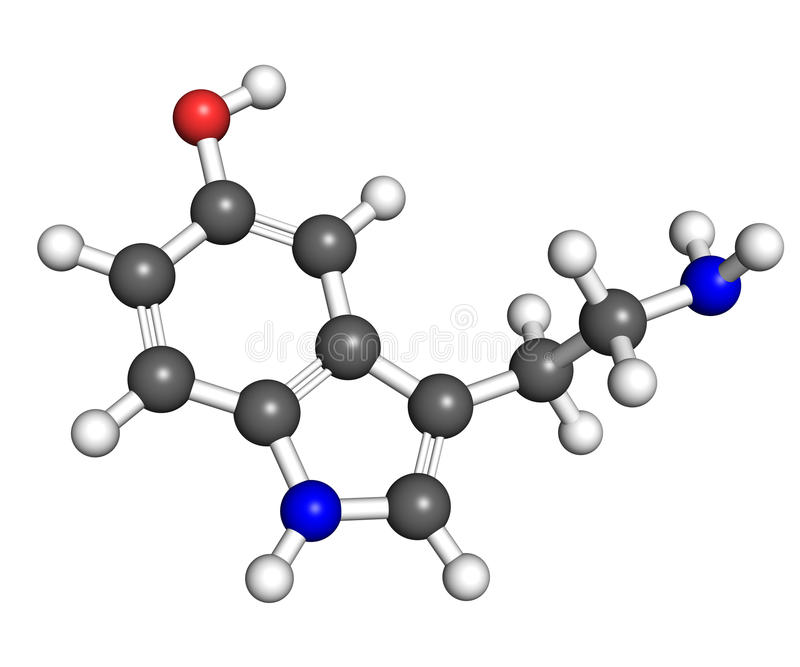 Serotonin molecule. Ball and stick model of serotonin, hormone that contributes to feeling of happines. Atoms are coloured according to convention (nitrogen-blue stock illustration